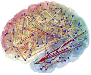 The brain represented as a network: image obtained from MR connectomics. (Provided by Patric Hagmann, CHUV-UNIL, Lausanne, Switzerland)