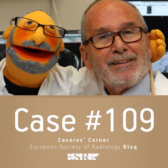 ESR_2015_Blog-CaceresCorner-109